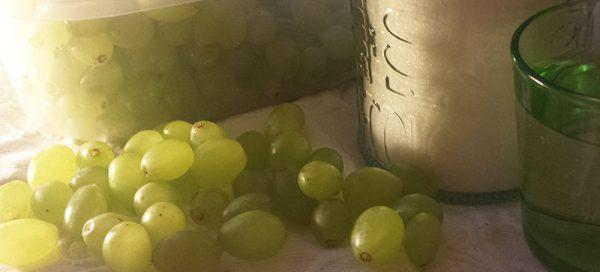 stafilia-raisins-2